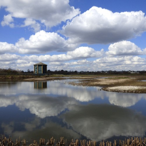 20160331_richmond_wetlands_reflected-clouds