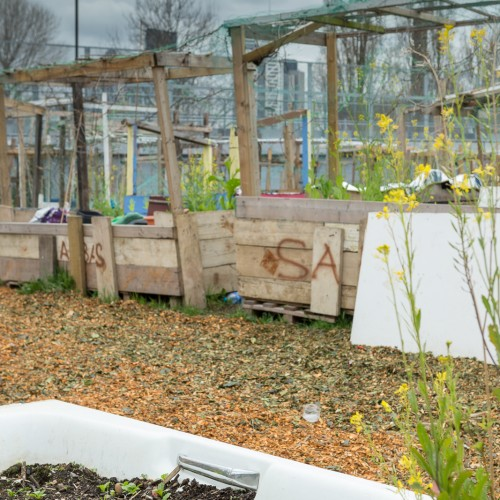 20160416_Tower_Hamlets_Nomadic_Community_Gardens_03