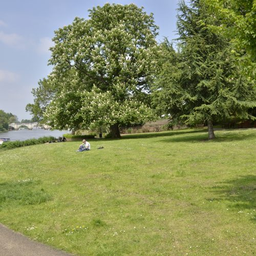 2016-05-12-Richmond_Thames-Path_Gardens-along-the-Path_Spring