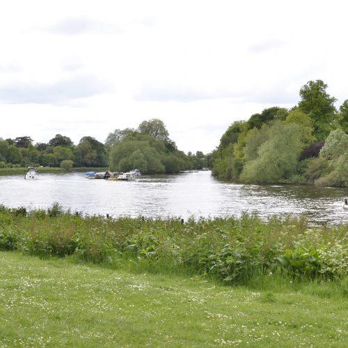 2016-05-33-Richmond_Petersham-Meadows_Spring_Landscape