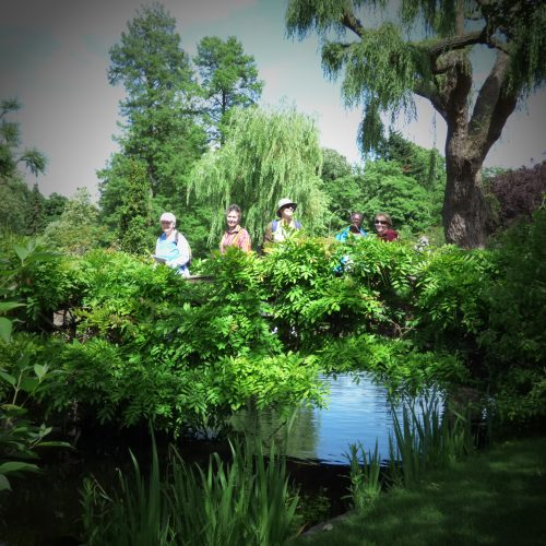 20160615_Camden_Regents-Park_Queens-of-the-Jungle