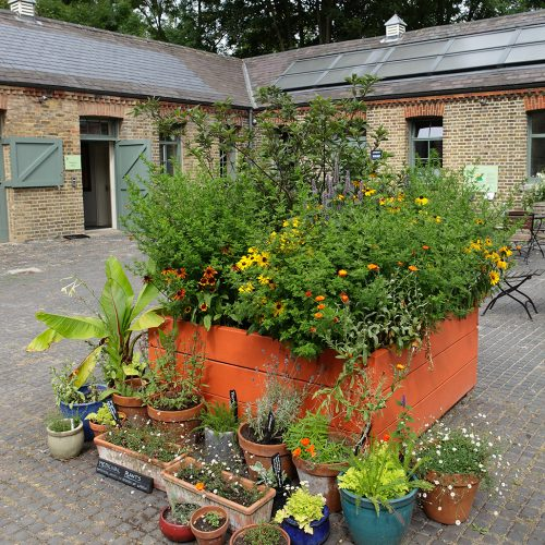 20160810_Merton_Morden-Hall-Park_Stable-yard-centrepiece