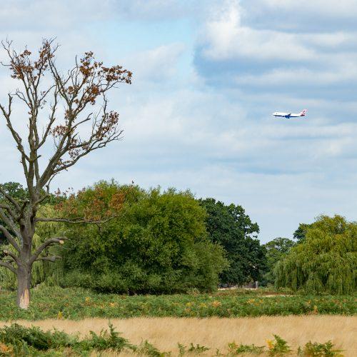 Coming_into_Heathrow