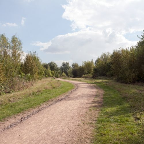 20160921-Havering-Tylers-Common-Autumn-All-purpose-path-DSC_8652