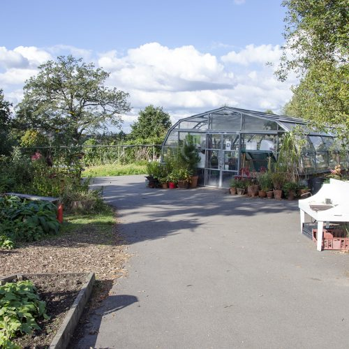 2016-10-11-Lambeth_Brockwell-Park_Autumn_Architecture-Community-Greenhouses