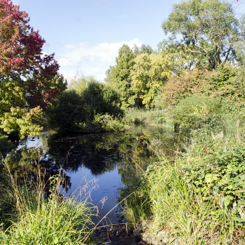 2016-10-13-Lambeth_Brockwell-Park_Autumn_Landscape-Ponds-showing-autumn-colour