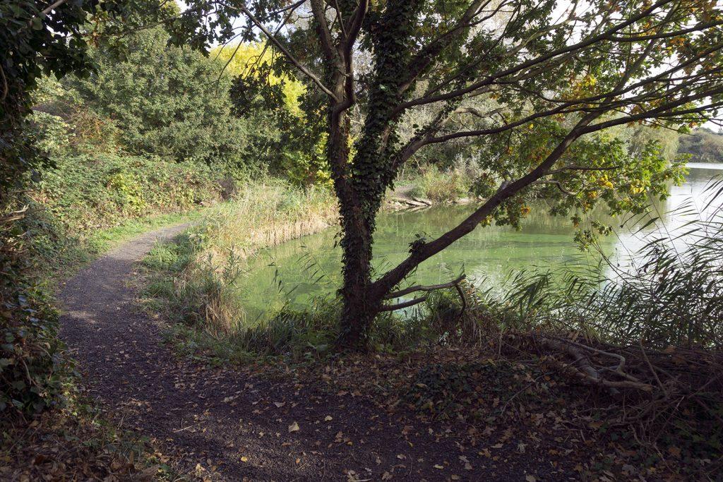 2016-10-26-Barking_Autumn_Eastbrook-Country-Park_White-Hart-Lakes
