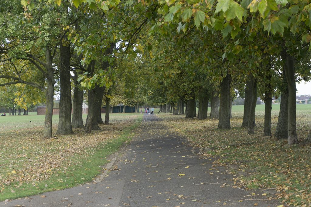 2016-10-26-Barking_Autumn_Eastbrookend-Country-Park_Landscape-Avenue-on-the-Playing-Fields-of-Central-Park