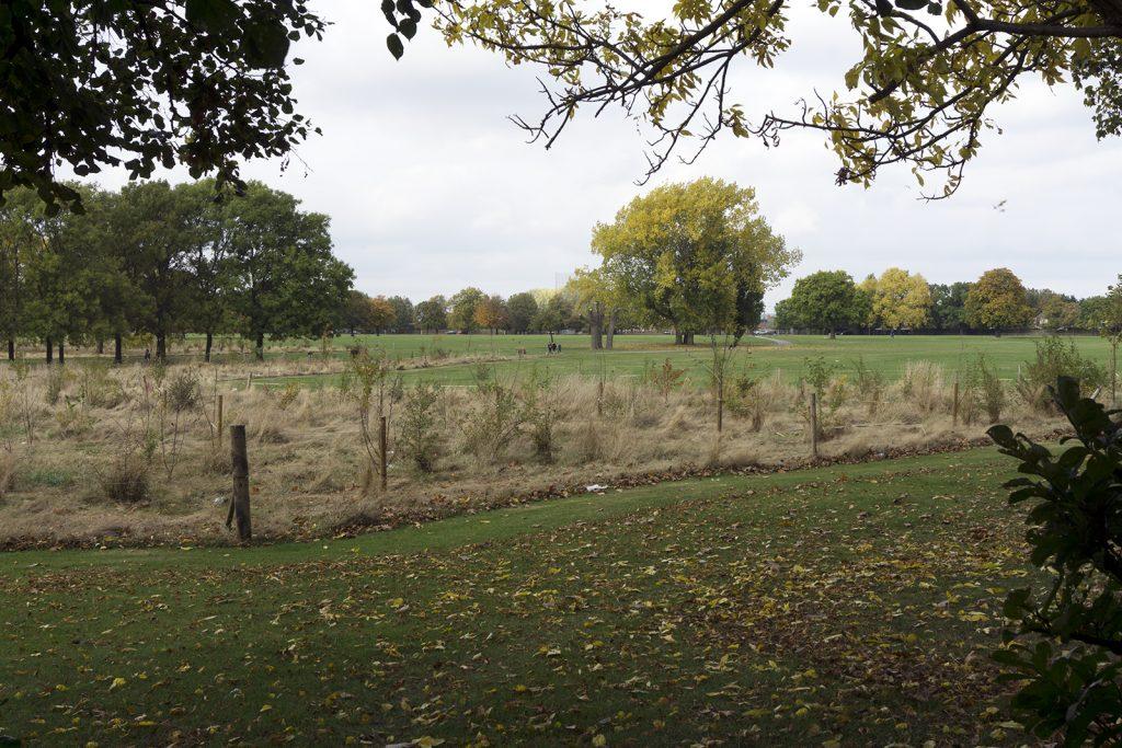 2016-10-26-Barking_Autumn_Eastbrookend-Country-Park_Landscape-Central-Park