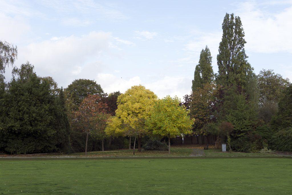 2016-10-26-Barking_Autumn_Landscape_Central-Park-Bowling-Green