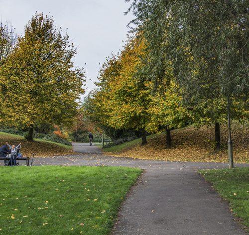 3-secret-park-the-north-circular-road