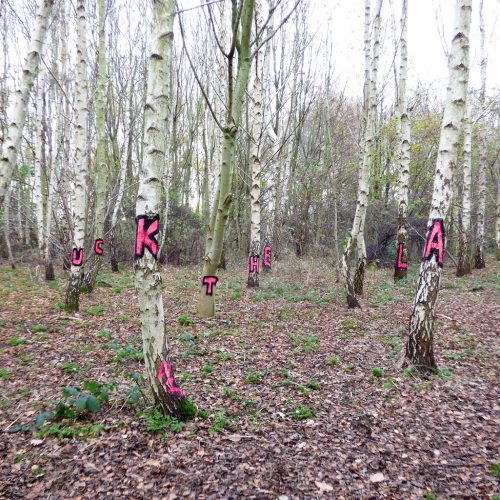 20161207_Hackney_Wick-Woodland_Fuck-The-Law