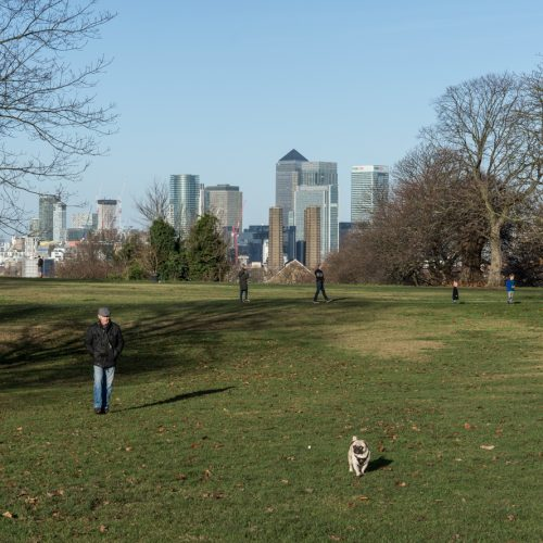 View-to-Canary-Wharf-Greenwich-Park-DSP1300