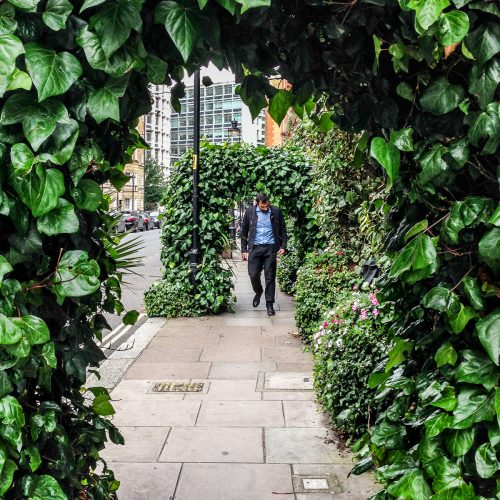 20160707_Westminster_Drury-Lane_Leaves-Archway