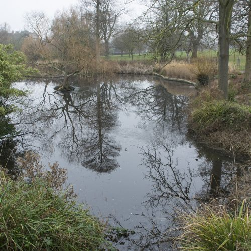 2017-01-25-Lambeth_Brockwell-Park_Landscape_Winter-Icy-Reflections