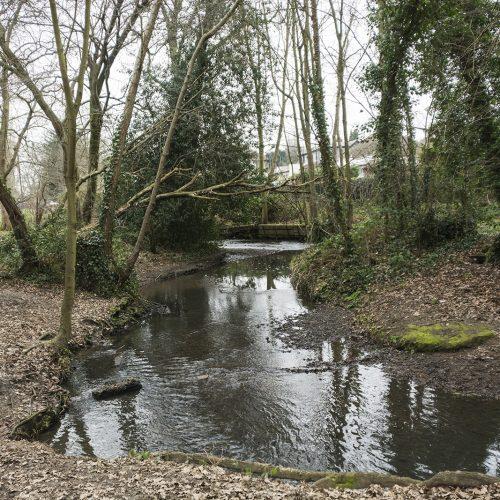 2017-02-15-Bexley_River-Shuttle_Landscape_Winter