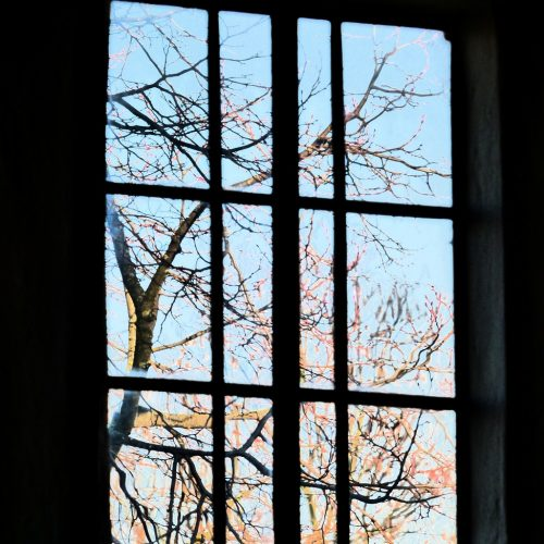 20170121_Barking-and-Dagenham_Eastbury-Manor_Through-the-Square-Window