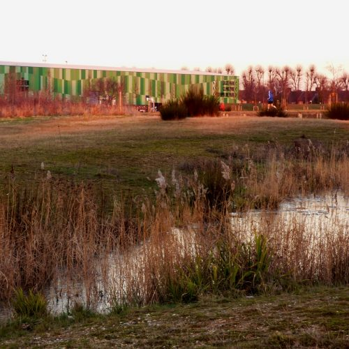 20170121_Barking-and-Dagenham_Mayesbrook-Park_View-Across-Mayes-Brook