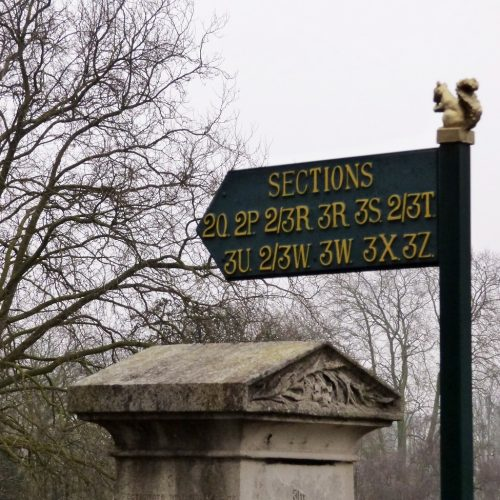 20170211_Brent_Paddington-Old-Cemetery_Squirrel-Guide