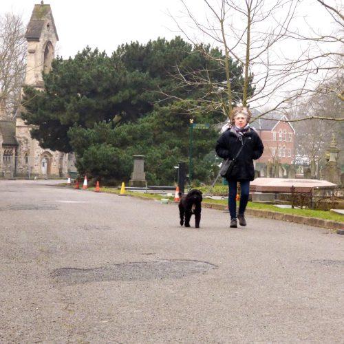 20170211_Brent_Paddington-Old-Cemetery_Walking-the-Dog