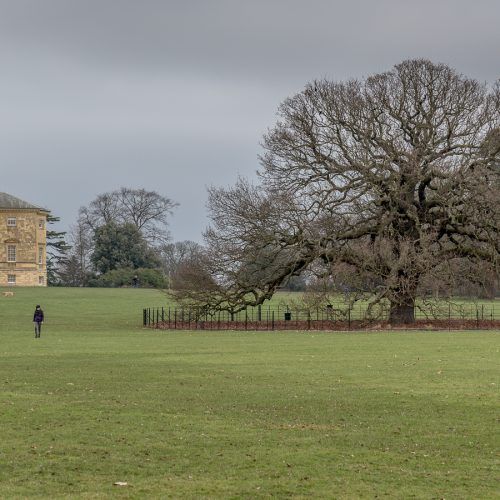 20170215_Bexley_Danson-Park_Out-for-a-stroll