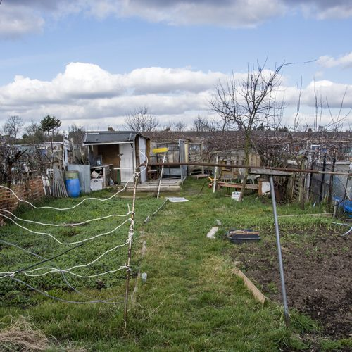 20170224_Enfield_Fraser-Road_Allotments