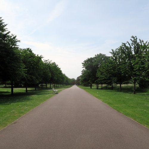 15-Burgess-Park-10_6_16