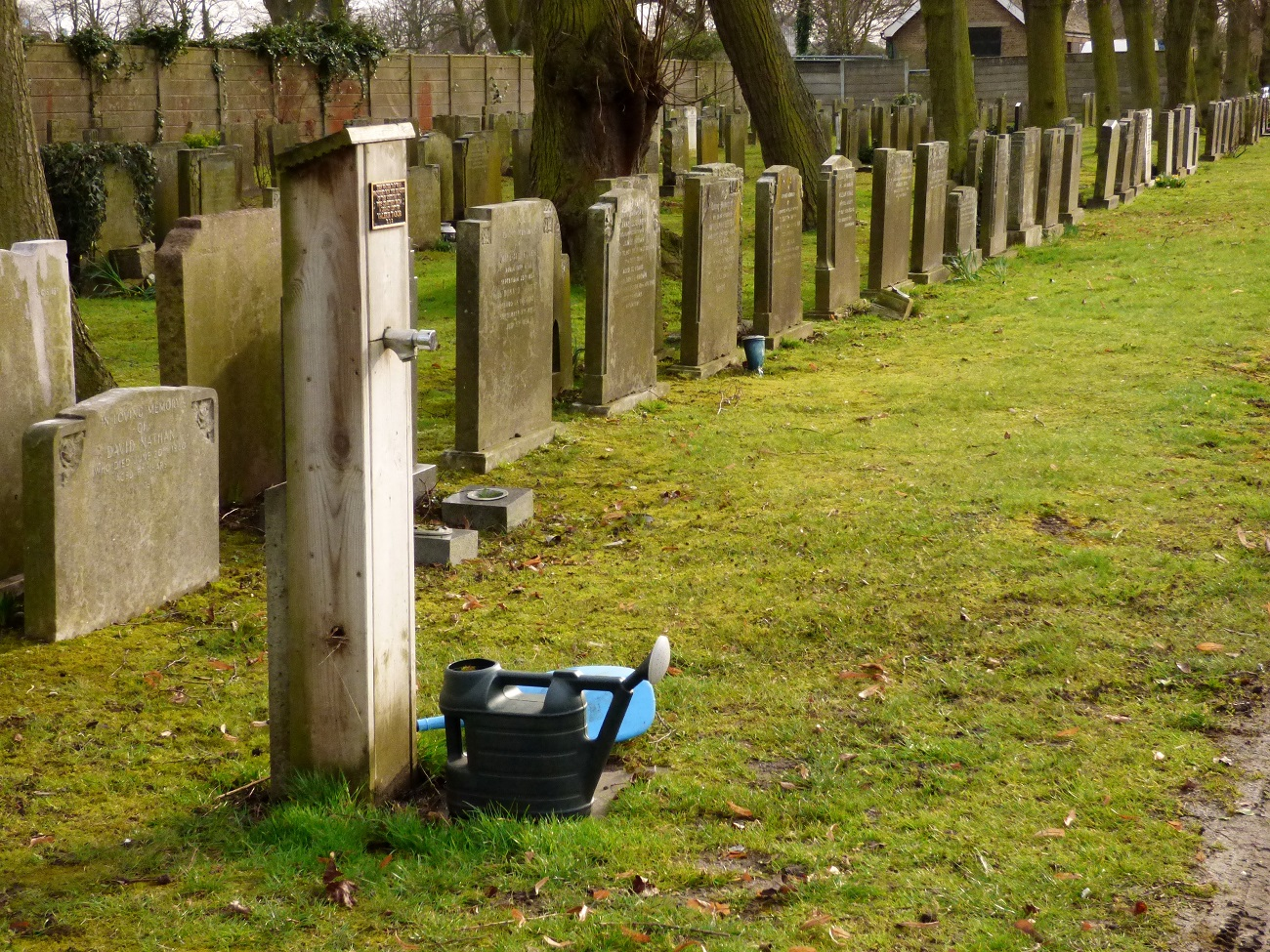 20170306_Redbridge_Barkingside-Cemetery_A-way-of-life