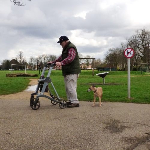 20170306_Redbridge_Queen-Elizabeth-II-Barkingside-Recreation_Reading-all-the-signs