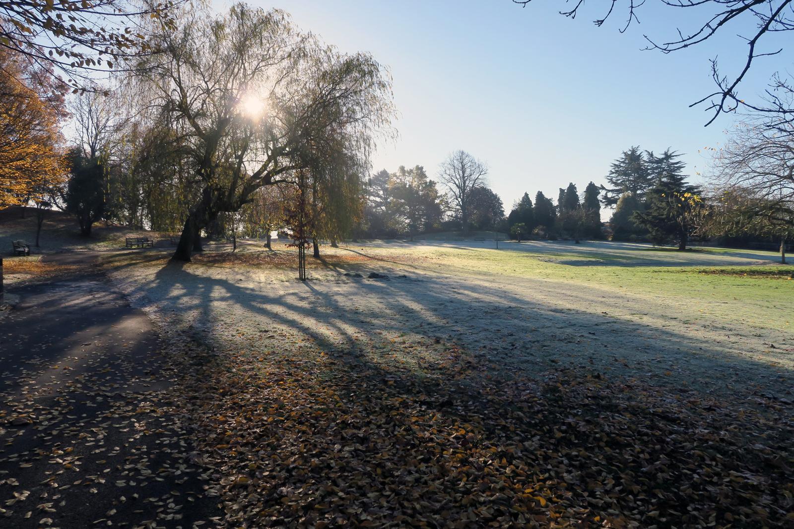29-Frosty-Park-Hill-Park-29_11_16