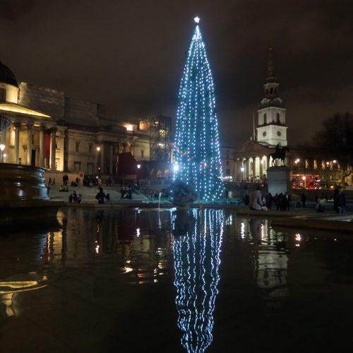 30-Trafalgar-Square-Tree-9_12_16