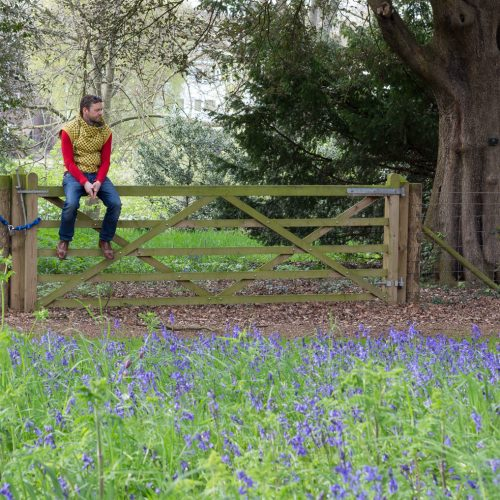 Luke and the Bluebell Field