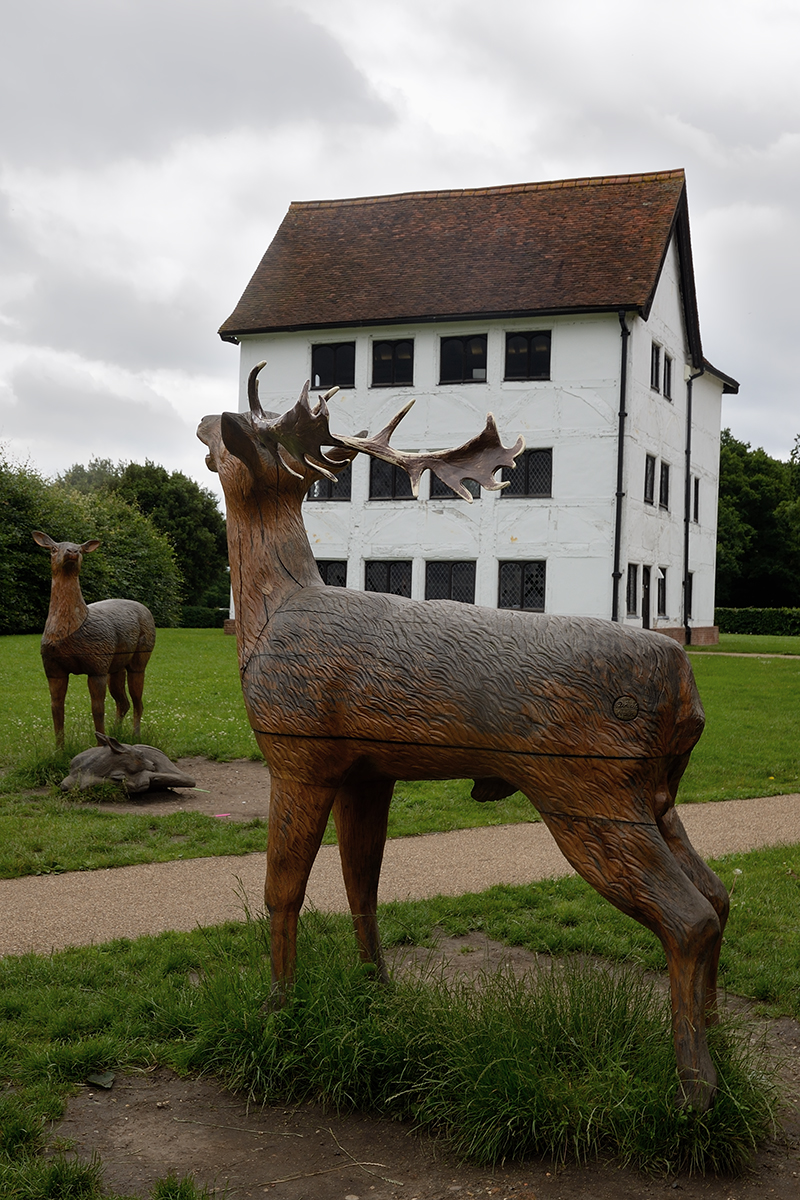 20160622_Waltham-Forest_Queen-Elizabeth-Hunting-Lodge_On-the-edge-of-Epping-Forest