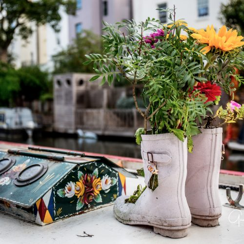 20161018_Camden_Regents-Canal_Boot-flowers-near-Camden
