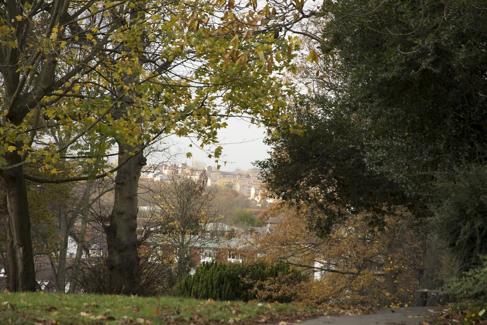 20161124_Bromley_Westow-Park_Landscape_Winter_View-towards-London