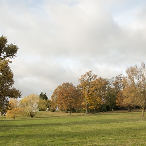 20161124_Croydon_Norwood-Grove-Recreation-Ground_Landscape_Winter_Late-Autumn-colours