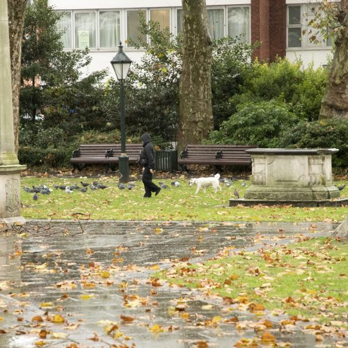 20161212_Kensington-and-Chelsea_Doverhouise-Green_People_Winter_Dog-and-owner-on-a-very-wet-day