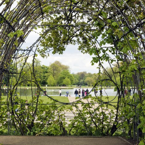 2017-04-17-Kensington-and-Chelsea_Landscape_Spring-Kensington-Palace-Gardens-Looking-to-Round-Pond