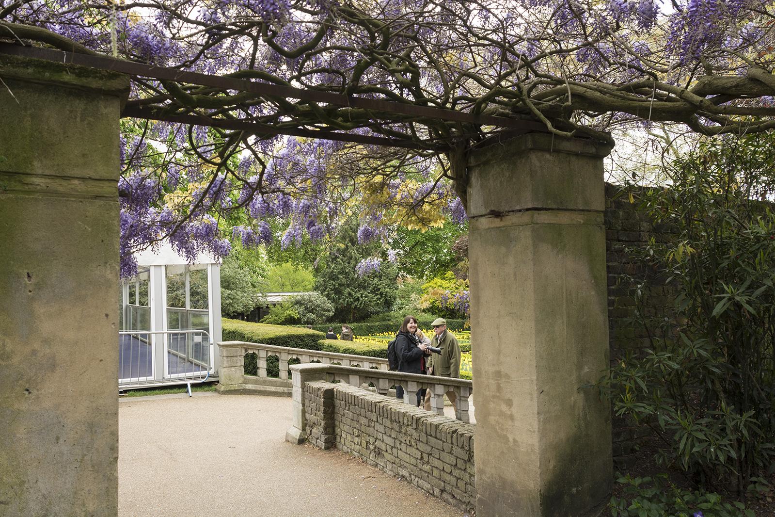 2017-04-17-Kensington-and-Chelsea_Spring_Landscape_Holland-Park-A-Breathing-Londoner