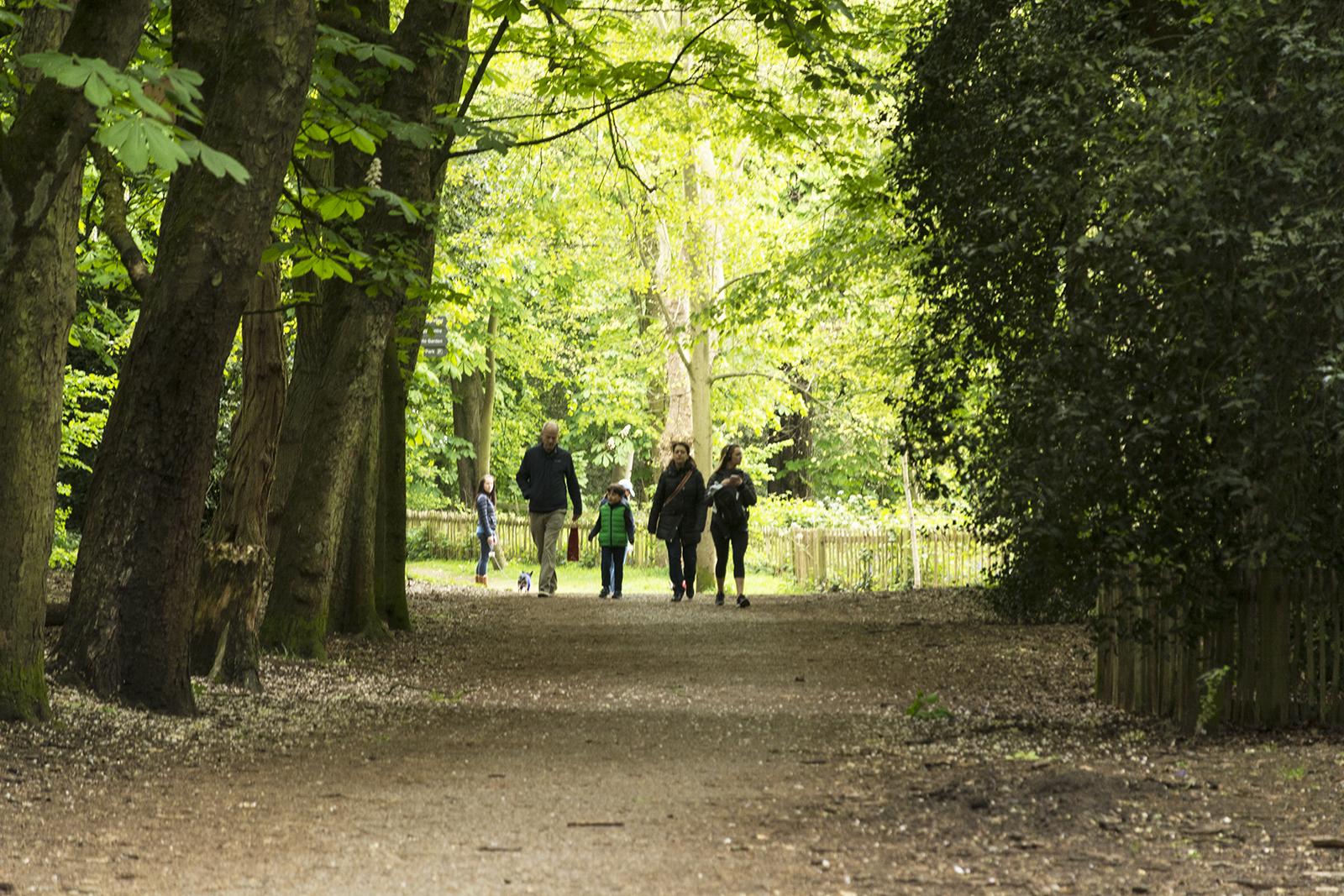 2017-04-17-Kensington-and-Chelsea_Spring_Landscape_Holland-Park-Walk-in-the-Park