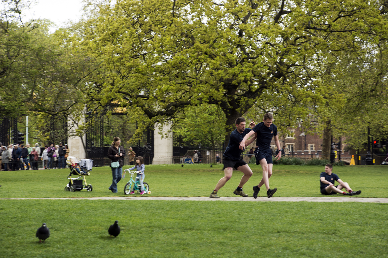 2017-04-17-Westminster_St-Jamess-Park_People_Spring-Two-pidgeons