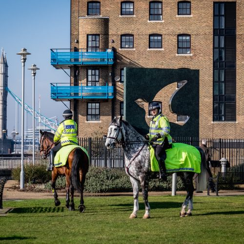20170214_Tower-Hamlets_Hermitage-Riverside-Memorial-Garden_Blitz-Memorial-Police-on-Horseback