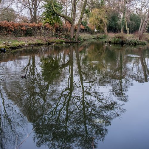 20170215_Bexley_Danson-Park_Trees-Reflected