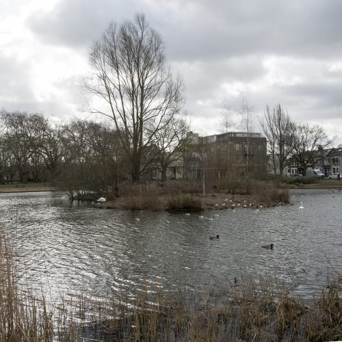 20170223_Richmond_Barnes_Landscape_Winter_Barnes-Pond-on-a-windy-day