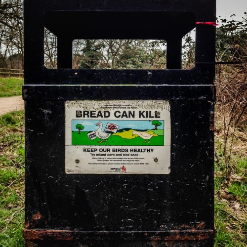 20170301_Enfield_Forty-Hall_Bread-Can-Kill