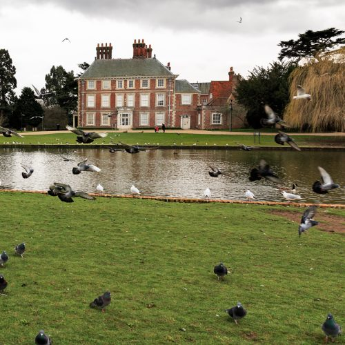 20170301_Enfield_Forty-Hall_The-Birds-Pond
