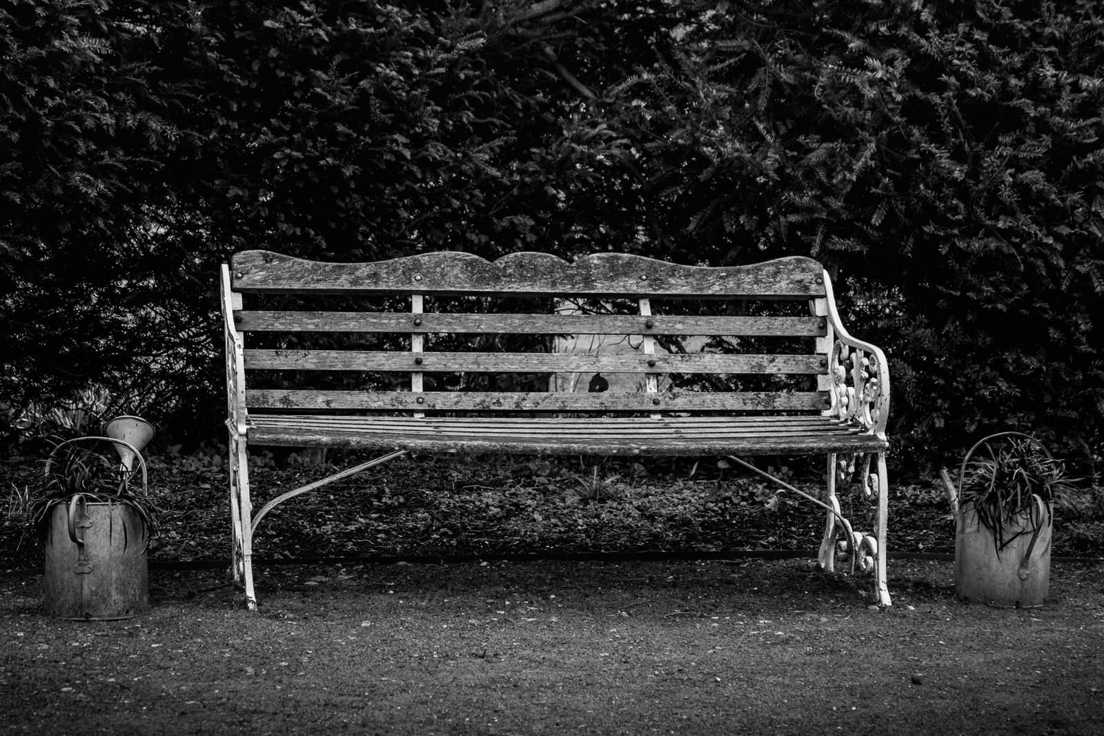 20170301_Enfield_Myddelton-House-Gardens_The-Bench