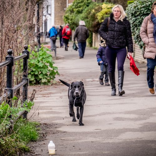 20170308_Hounslow_Strand-on-the-Green_Dog-baby-bottle