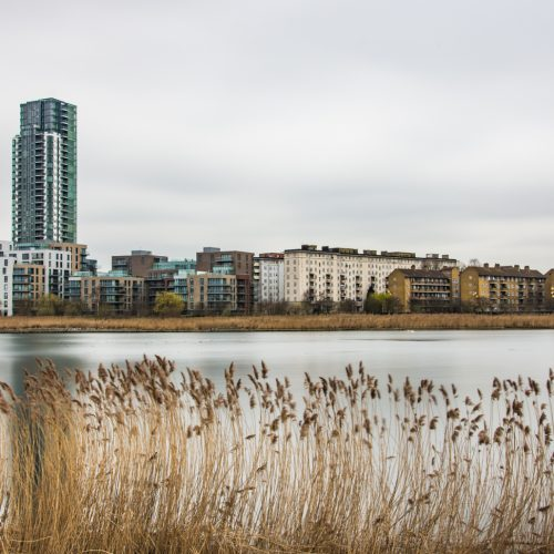 20170310_Hackney_WoodberryWetlands_OldandNew