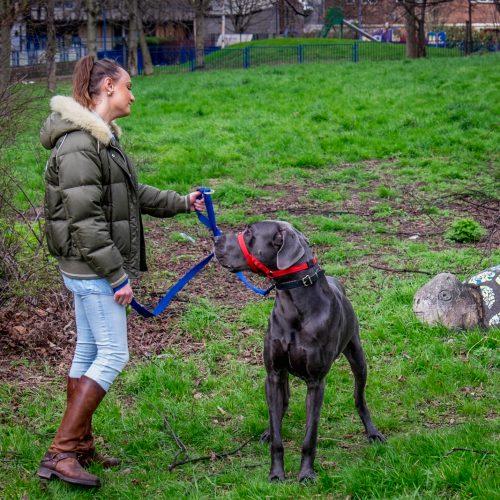 20170311_Tower-Hamlets_Robin-Hood-Gardens_Loving-Dog-Owner